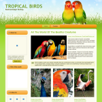 R 39-month Template website Tropical Pets template